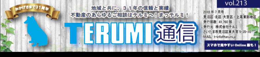 https://terumi.jp/wp-content/uploads/2018/07/751a61a62b286f4c0b5a7d85bf13a7a3-900x200.png