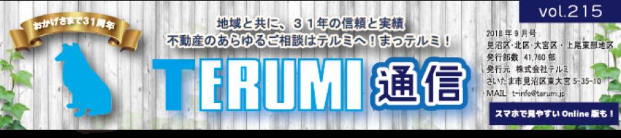 https://terumi.jp/wp-content/uploads/2018/09/751a61a62b286f4c0b5a7d85bf13a7a3-1-900x200.png