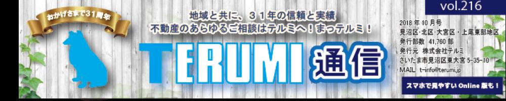 https://terumi.jp/wp-content/uploads/2018/10/8bc62af8e5a38dea020696820b40417f-1000x200.png