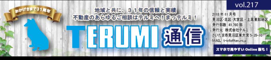 https://terumi.jp/wp-content/uploads/2018/11/751a61a62b286f4c0b5a7d85bf13a7a3-900x200.png