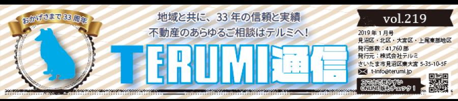 https://terumi.jp/wp-content/uploads/2019/01/751a61a62b286f4c0b5a7d85bf13a7a3-900x200.png