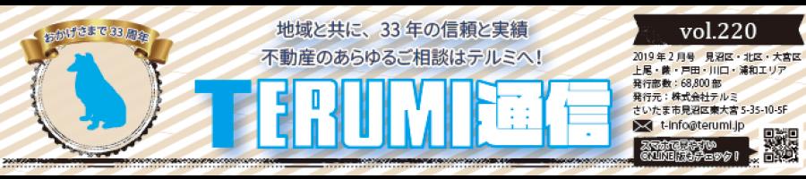 https://terumi.jp/wp-content/uploads/2019/02/751a61a62b286f4c0b5a7d85bf13a7a3-900x200.png