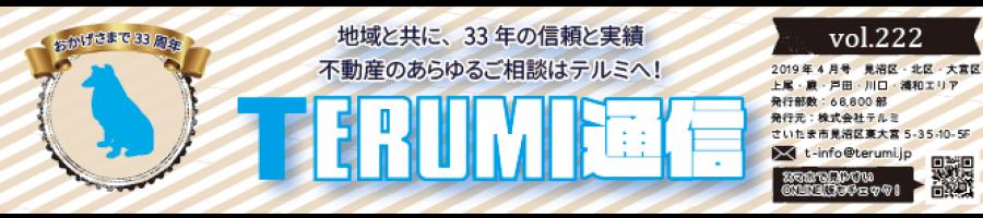https://terumi.jp/wp-content/uploads/2019/04/751a61a62b286f4c0b5a7d85bf13a7a3-900x200.png
