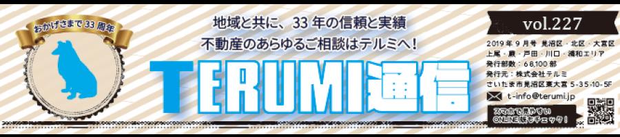https://terumi.jp/wp-content/uploads/2019/09/751a61a62b286f4c0b5a7d85bf13a7a3-900x200.png