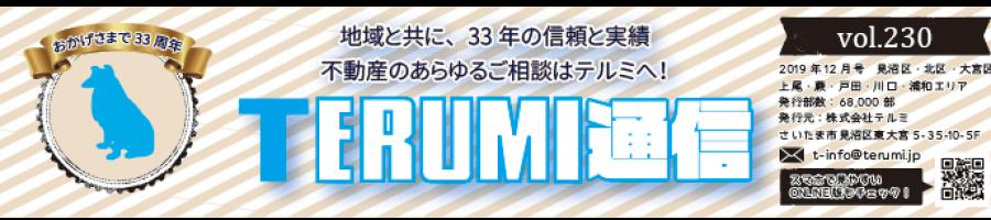 https://terumi.jp/wp-content/uploads/2019/12/751a61a62b286f4c0b5a7d85bf13a7a3-900x200.png